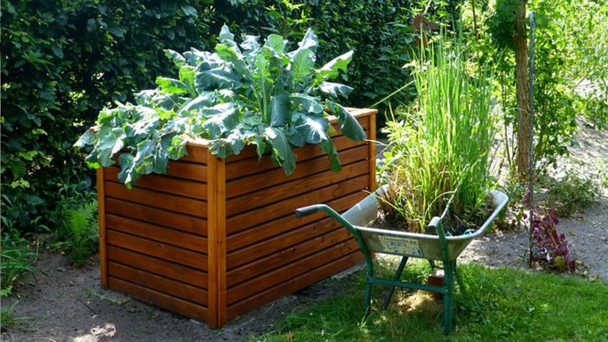 The Best DIY Raised Garden Bed Ideas